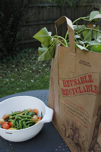 20121004. Sweet potatoes, peppers, an Romas.