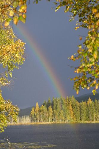 Regnbue / Rainbow