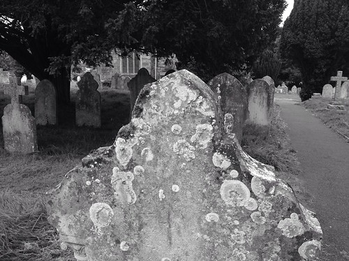 Gravestone on an Autumn evening