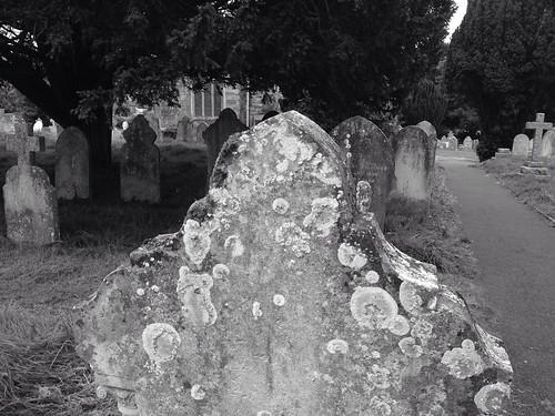 Gravestone on an Autumn evening