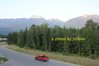 hotel view in revelstoke - see the forest