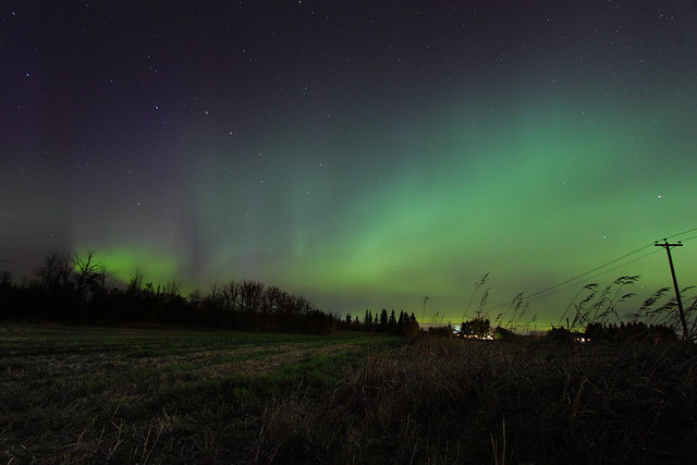 Wash of aurora over field