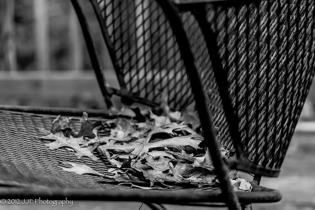 2012_Oct_24_Chair with Leaves_008