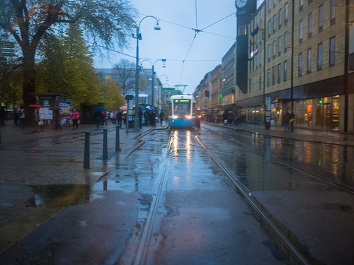 293/366 - Rainy day by Flubie