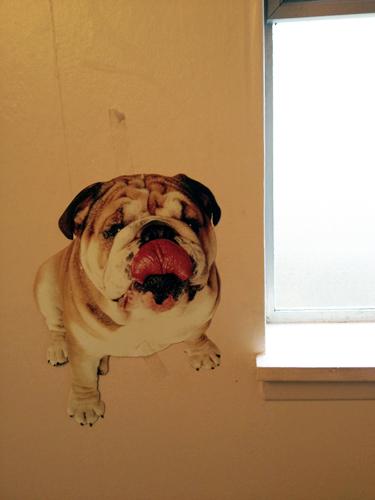 Bathroom bulldog