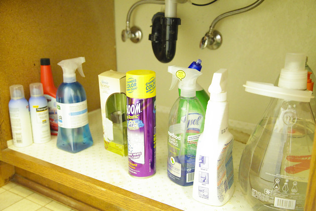 Under the Sink: Guest Bathroom