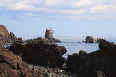 Jeju Island (180)