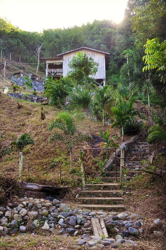 A house on a hill