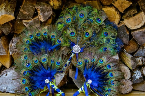 Peacock Bouquets