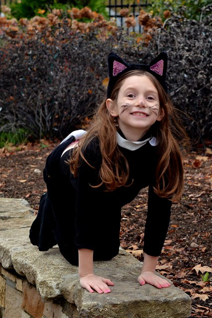 Caitlin the Cat!