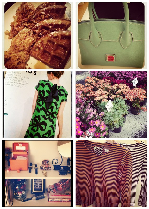 Simply Epalf Sunday Snapshots 10-29-12