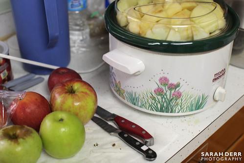 Applesauce 6