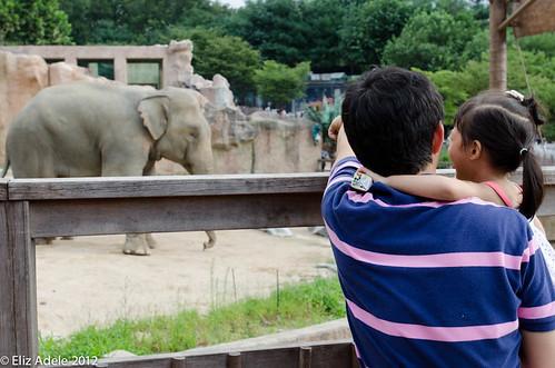 Children's Grand Park web-37
