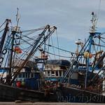 Essaouira 06
