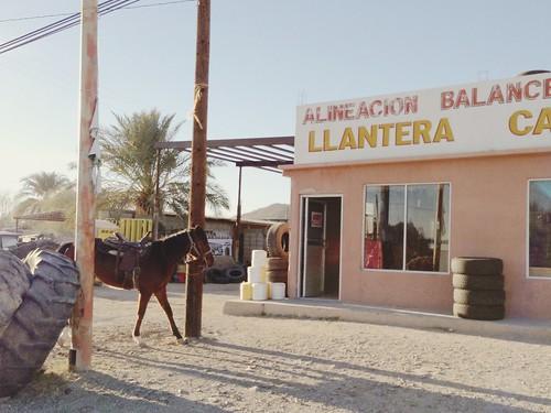 Sonoyta, Sonora. Mexico