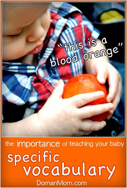 The Importance of Teaching Your Baby Specific Vocabulary