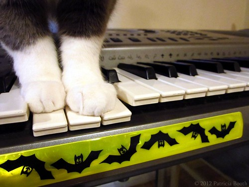 Day 299 The Batty Keyboard by pixygiggles