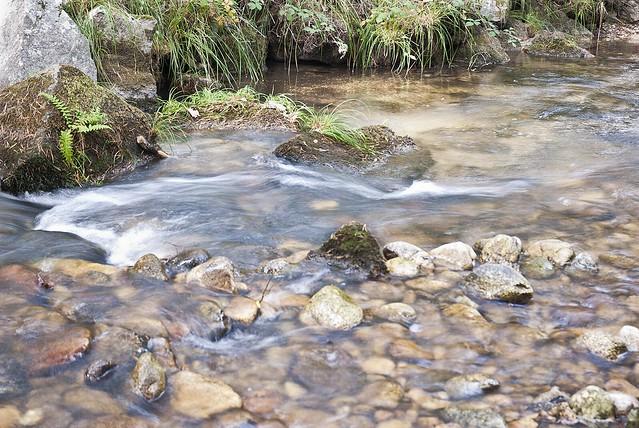 Río Eresma #3