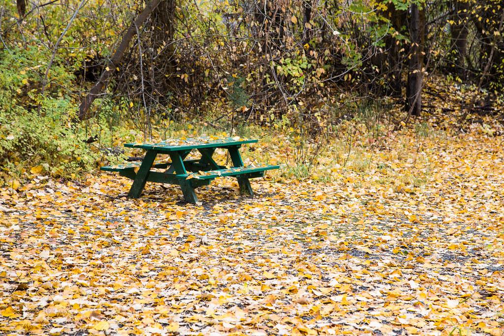 end of picnic season