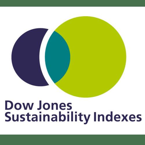 Logo_Dow-Jones-Sustainability-Indexes_dian-hasan-branding_US-1