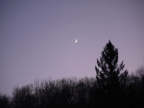Pink sky and moon
