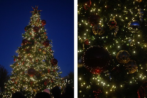 tree lighting (1280x853)