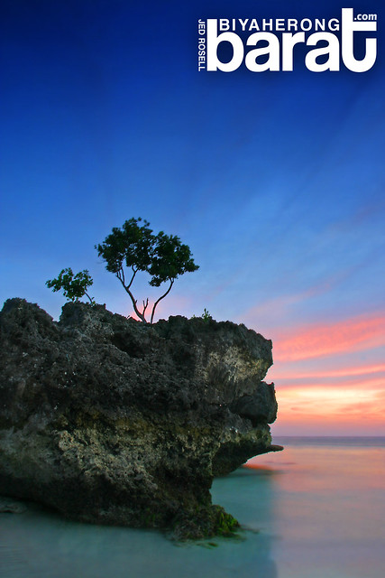 Boracay Willy's Rock Aklan