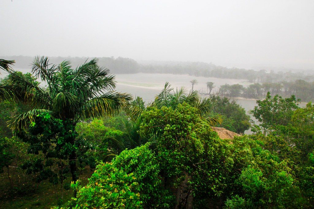 Tropical Rainstorm by the Jungle Lodge - Amazon, Brazil