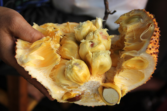 Pieces of cempedak fruit