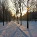 Neve al parco