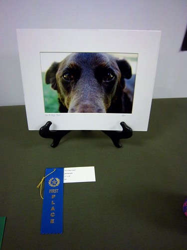 Elle's first place photograph