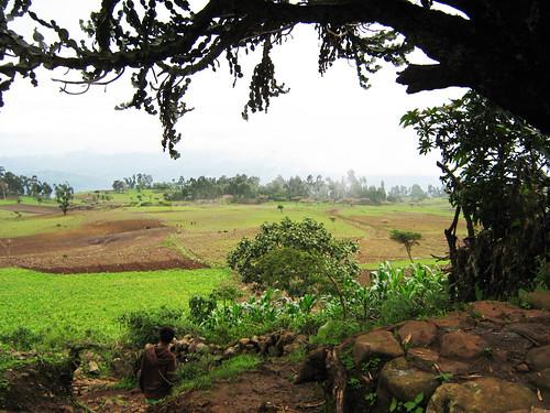 Meta Robi landscape, Oromia, Ethiopia