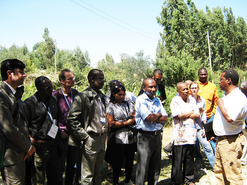 IPMS dairy value chain experience visited