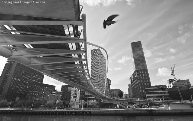 Torres Isozaki Atea, Bilbao