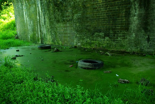 20120527-M_Lias Line_Grotty Slime Under A45 by gary.hadden