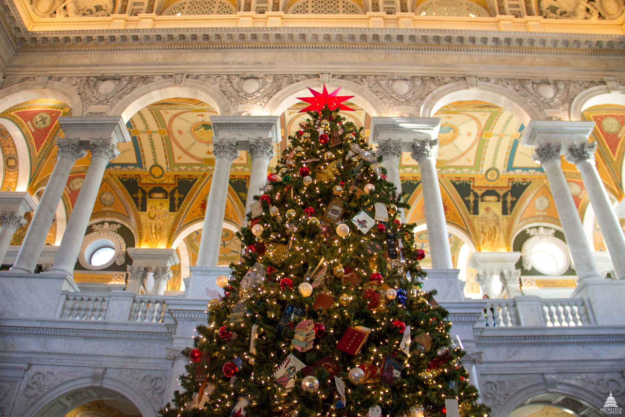 tree in the Library of Congress Great Hall