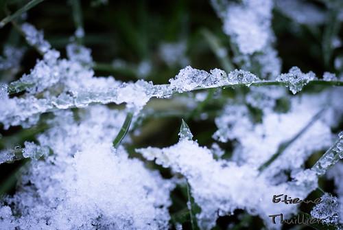 06 décembre 2012-114715 by e.thuillier