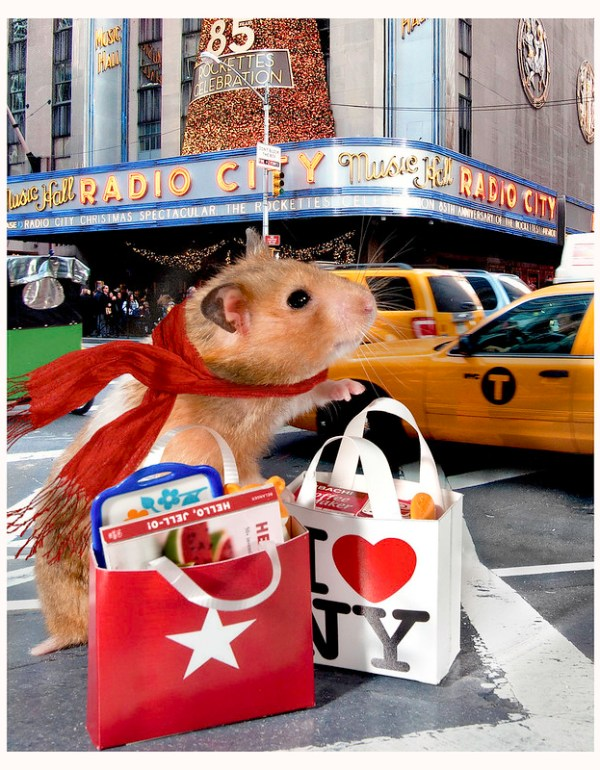 Hamster Holiday Shopping