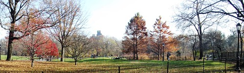 Central Park in the fall (Great Lawn)