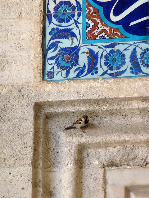 Turquie - jour 2 - Istanbul - 61 - Süleymaniye Camii