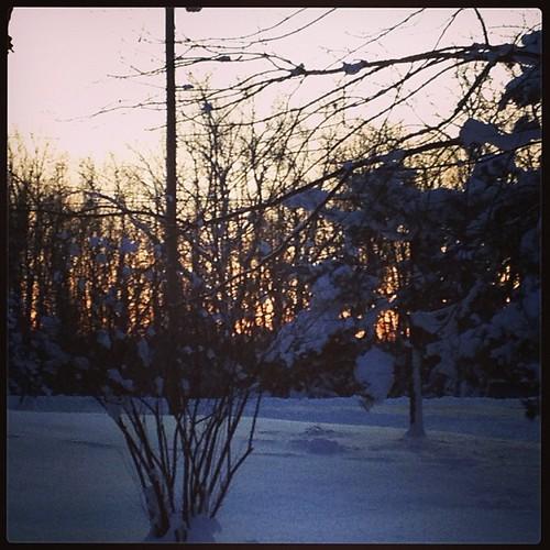 Feb 4 - hope {dawn of a new day always brings hope} #fmsphotoaday #sunrise