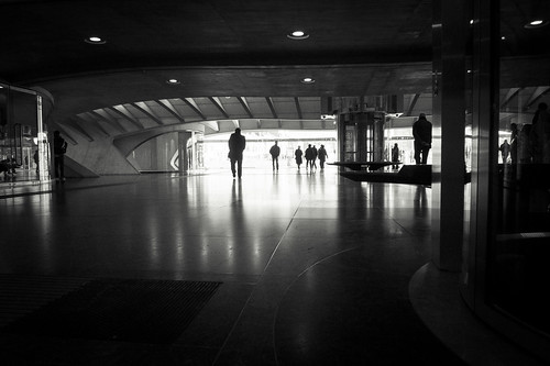Urban Mythologies : In the Belly of the Space Whale (Gare de Liège-Guillemins, Belgium) - Photo : Gilderic