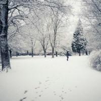 Seul(e) dans la neige...