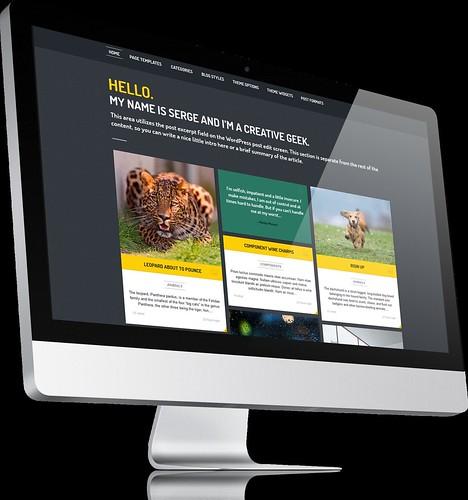 Streak - Responsive WordPress Theme - iMac 3