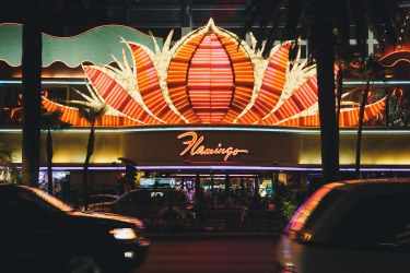 The Flamingo from across the street - Las Vegas Nevada, 2012