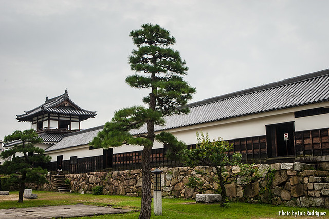 Castillo de Hiroshima-11