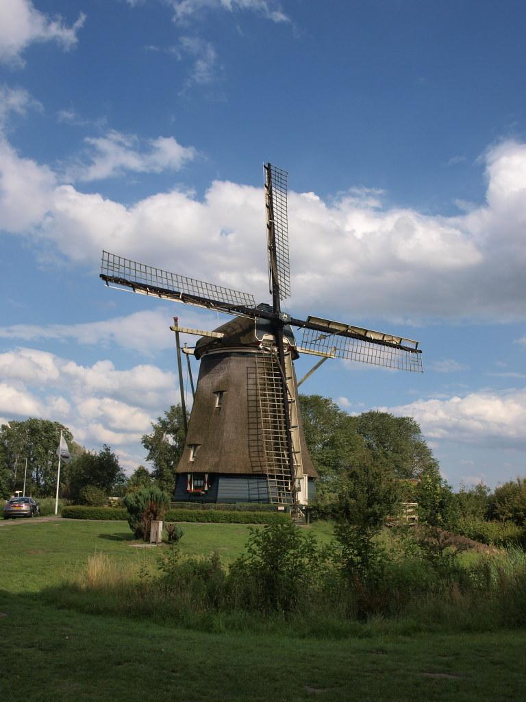 Windmühle am Stadtrand von Amsterdam