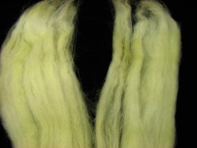 Forest Targhee - split braid in half