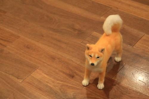 Dog Doll - GINZA Illumination2012