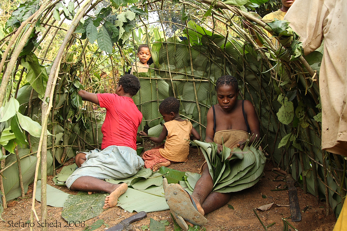 Baka people building a new hut